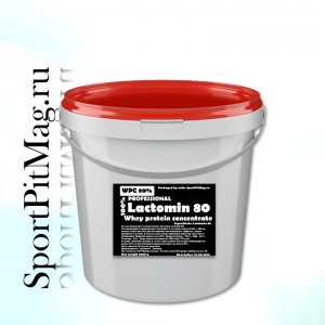 Концентрат Сывороточного Протеина Лактомин 80 (WPC Lactomin 80) 1 кг Ведро